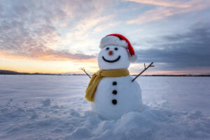 Winter Gas Meter Safety